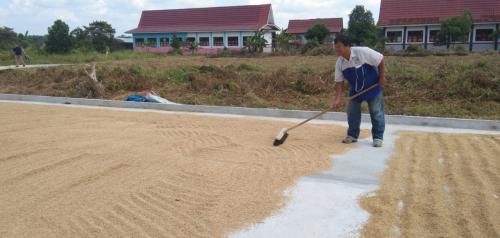 Maret 2020, Penurunan Nilai Tukar Petani di Riau Tertinggi di Sumatera