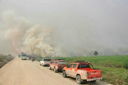 Kabut Asap Pekat Karhutla, Sekolah di Pelalawan Belum Diliburkan