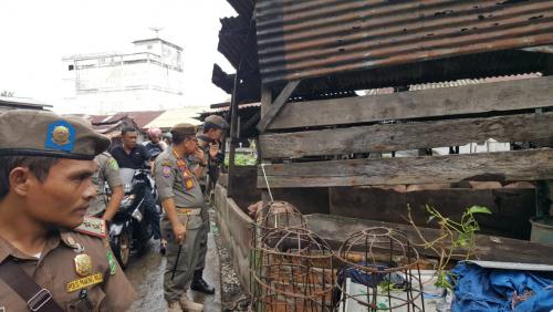 Banyak Pedagang Mengeluh, Kandang Babi di Pasar Sandang Pangan Selatpanjang Segera Direlokasi