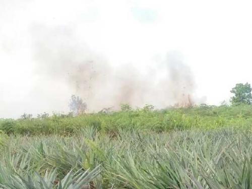 Anggaran Belum Turun, Tim Tetap Lakukan Pemadaman Lahan Terbakar di Dumai