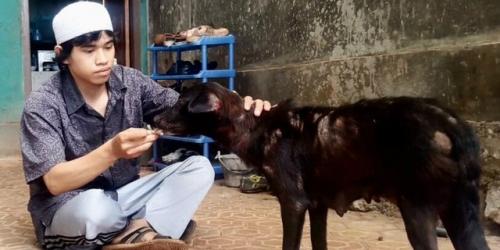 Inspiratif, Santri yang Dulu Obati Anjing Liar Terluka dan Pernah Jadi Penyapu Jalan, Kini Sukses Berbisnis Sambil Berdakwah