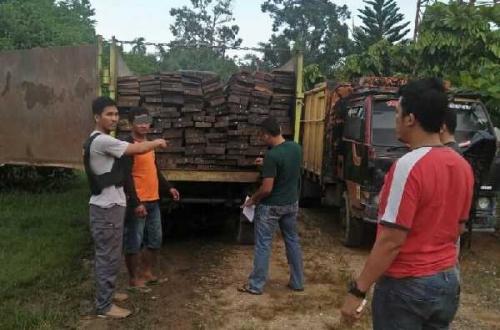 Angkut Ratusan Keping Kayu Tanpa Dokumen, Sopir Truk Diamankan Polisi di Pelalawan