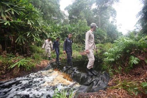 Kisah Manalu, Ranger Penjaga Hutan Konservasi; Rela Pulang ke Rumah Sebulan Sekali dan Panjat Pohon 30 Meter untuk Dapatkan Sinyal Telepon