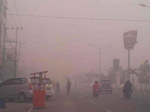 Udara di Dumai Berbahaya, Warga Diimbau Tak Beraktivitas di Luar Rumah