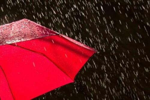Diguyur Hujan, Karlahut di Kepulauan Meranti Nihil