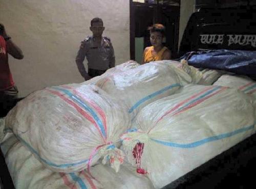 Polres Inhil Sita 750 Kg Bawang Merah Selundupan Asal Pakistan dan Birma