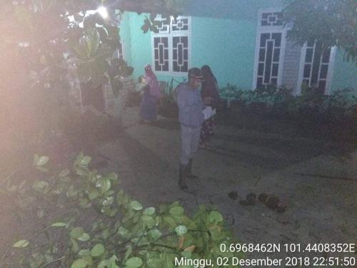 Kawanan Gajah Liar Cari Makan ke Pemukiman Warga dan Kantor Pemerintah Kecamatan Minas