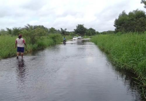 Ini Data Rumah dan Warga Terdampak Banjir di Kecamatan Teluk Meranti