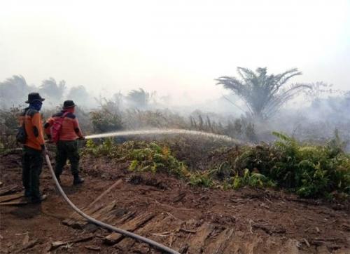 Manggala Agni Terus Berupaya Padamkan Api di Perbatasan Rohil