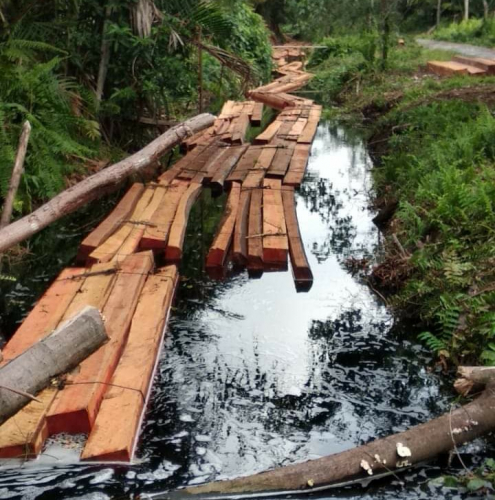 Pemilik Menghilang, Ratusan Batang Balak Tim Diamankan Polres Kepulauan Meranti