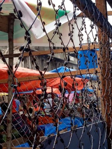 Bekas Pasar yang Terbakar Diserbu Wabah Lalat, Pedagang Minta Pemkab Inhil Ambil Tindakan