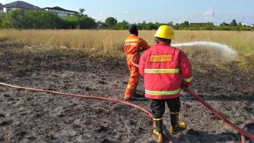 Diduga Akibat Bakar Sampah, Lahan Kosong di Jalan Pemuda Pekanbaru Terbakar