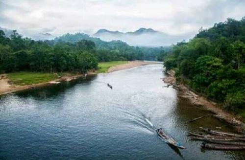 Dilarang Meracun dan Menyetrum Ikan di Sungai Kampar, Jika Melanggar akan Dipenjara dan Didenda