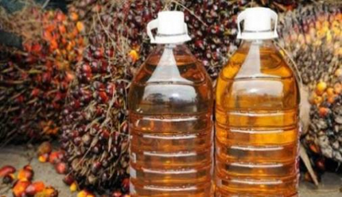 Merebaknya Virus Corona Pengaruhi Ekspor Minyak Sawit Mentah