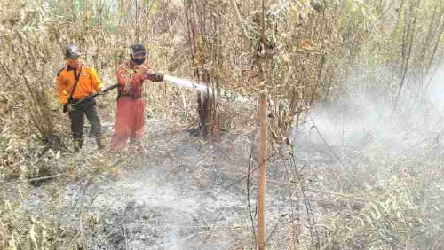 Riau Sering Sumbang Hotspot, 7 Tim Terpadu dan Terukur Dikirim ke Wilayah Rawan Karlahut