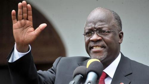 Kambing dan Pepaya Positif Corona di Tanzania, Kok Bisa? Begini Penjelasan Presiden