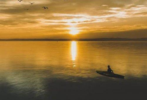 Pergi Cari Rotan, Pria Paruh Baya di Rohil Menghilang di Sungai Rokan