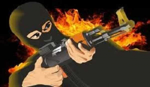 Coba Serang Petugas Pakai Bom Pipa, Seorang Teroris Jaringan Jamaah Ansharut Daulah Tewas Ditembak Polisi di Pelalawan