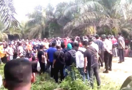 Wakil Ketua DPRD Riau Sayangkan Perlakuan tidak Manusiawi PT NWR di Gondai