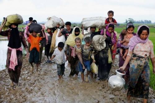 Helikopter Militer Myanmar Tembaki Muslim Rohingya yang Sedang Bekerja di Sawah, 7 Tewas dan 18 Terluka