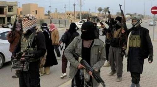 Asisten Sekjen PBB: Hampir 30.000 Teroris Asing Saat Ini Berada di Suriah dan Irak