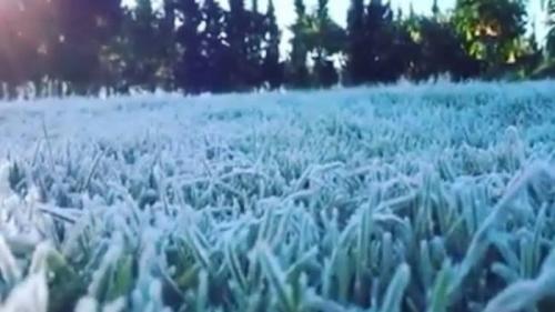 Dataran Tinggi Dieng Diselimuti Embun Salju, Begini Penjelasan Pihak Klimatologi