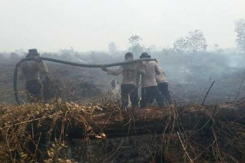 Masuki Musim Kemarau, BNPB Tambah 2 Helikopter untuk Cegah Karhutla di Riau