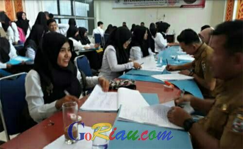 Seleksi CPNS Pelalawan 2019, Formasi Didominasi Tenaga Pendidik