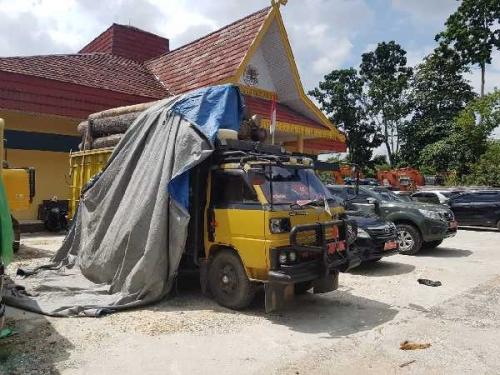 KLHK Tangkap Sopir Pembawa Kayu Hasil Ilegal Logging di Riau