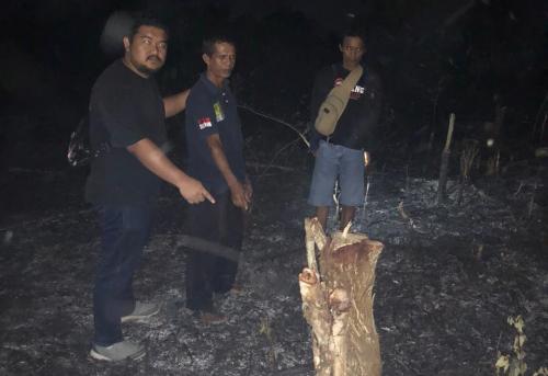 Bersihkan Lahan dengan Cara Membakar, Pria di Duri Ditangkap Polisi