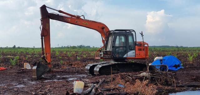 Buka Lahan Sawit di Kawasan Hutan, Pria di Bengkalis Ditangkap Ditreskrimsus Polda Riau