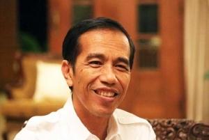 Ini Agenda Blusukan Jokowi ke Riau Versi Kepala BPBD