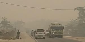 Pagi Ini, 172 Titik Api Membara di Riau