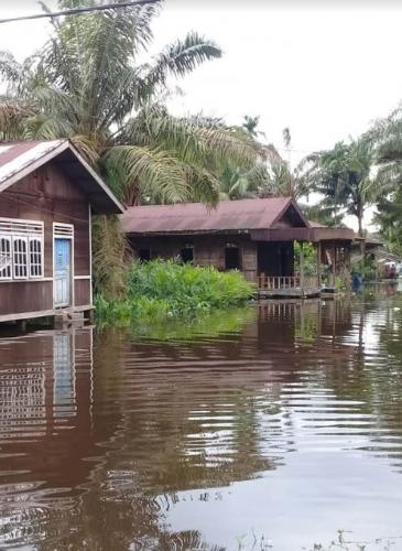 Debit Air Sungai Kampar Mulai Naik, Ini yang Dilakukan BPBD Pelalawan