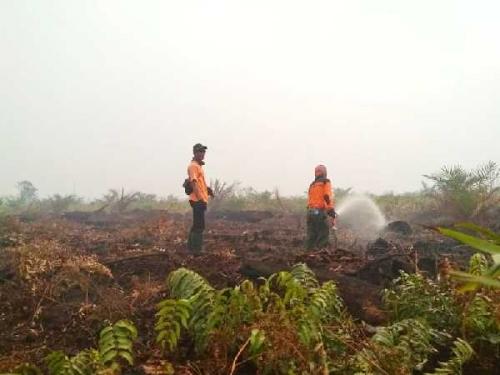 Kebakaran Lahan di Riau Sudah 66,5 Hektare, Belum Ada Tersangka