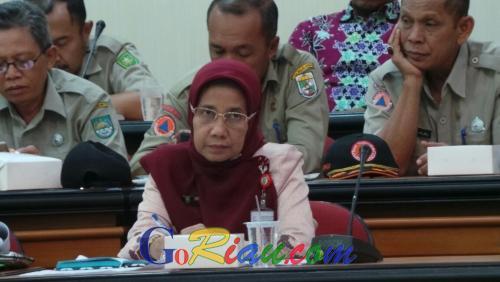 2 Warga Rokan Hulu Meninggal KLB DBD, Kabupaten/Kota di Riau Mulai Waspada Serangan Aedes Aegypti