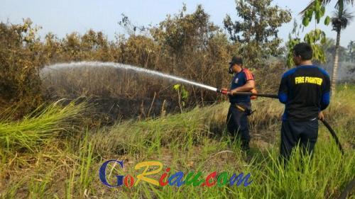 Ada Saja Kebakaran, Giliran Lahan di Banglas Riau Dilalap Api