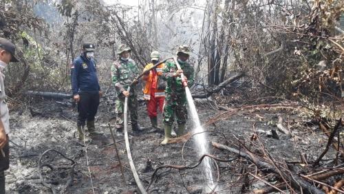 TNI Terus Lakukan Pendinginan di Areal Bekas Karhutla di Pelalawan