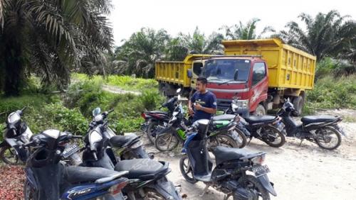 Tak Bisa Angkut Hasil Panen, Akses Jalan Kebun KKPA Dihalangi Truk PT Safari Riau