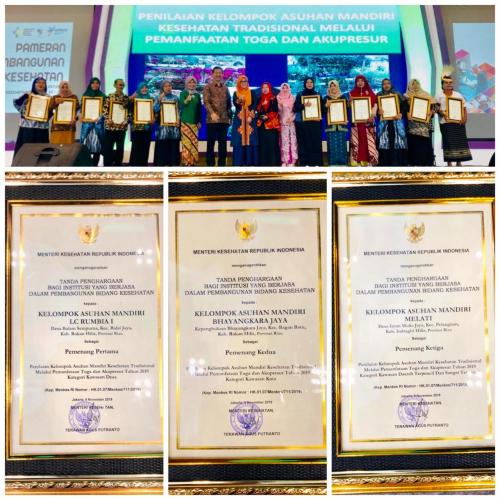 Berjasa dalam Pembangunan Kesehatan, Dua Kabupaten di Riau dapat Penghargaan dari Menkes RI