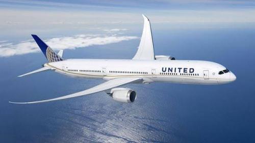 Mengerikan, Penumpang Pesawat Disengat Kalajengking dalam Penerbangan