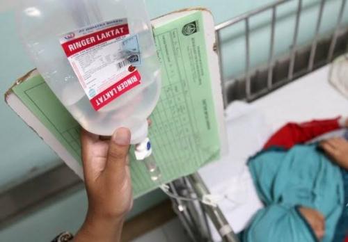 Terserang DBD, Satu Warga Kuala Kampar Pelalawan Dirawat di RSUD Selasih