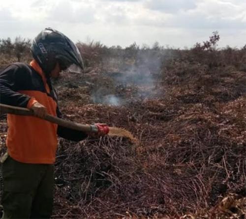 Tingkatkan Penanganan Kebakaran, BPBD Dumai Tambah Peralatan Senilai Rp6 Miliar