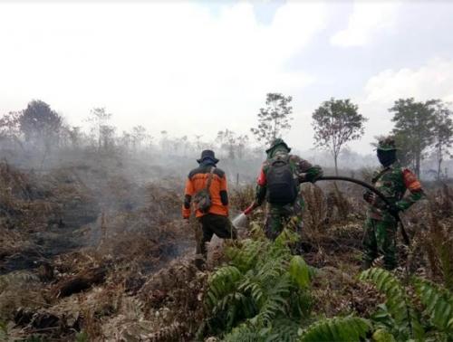 Pelaku Pembakaran Hutan Dan Lahan di Dumai Ditangkap Polisi