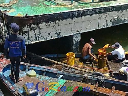 Anggota Dewan: PT Pelindo 1 Jangan Latah Bilang CPO Tidak Rusak Ekosistem dan Biota Laut Dumai