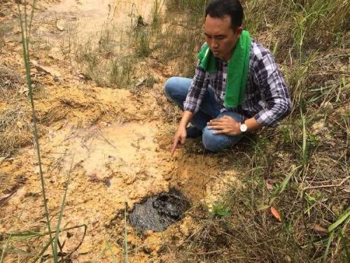 Limbah Minyak Chevron Diduga Meluap di Desa Buluh Manis Bengkalis