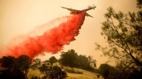 Kebakaran Dahsyat Landa California, 1.500 Bangunan Telah Hancur, Api Masih Berkobar, 20 Ribu Warga Mengungsi