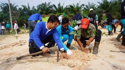 200 Karyawan PT RAPP Menanam Pohon untuk Kesejahteraan Masyarakat di Desa Pangkalan Delik