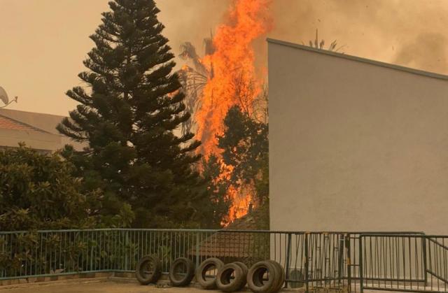 Panas Ekstrem Sebabkan Banyak Rumah Terbakar di Israel, Ribuan Penduduk Mengungsi