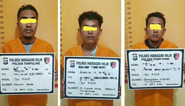 Pencurian Baterai Tower Telkom di Tempuling Inhil Terungkap, Pelaku Pekerjanya Sendiri